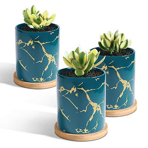 T4U 7cm Keramik Sukkulenten Topf mit Untersetzer 3er-Set Grün, Klein Mini Blumentopf Übertopf für Zimmerpflanzen Kakteen Moos Innenbereich