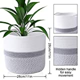 Zoom IMG-2 colmanda cesto per piante vasi
