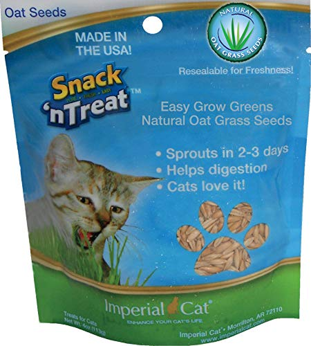 Imperial Cat Easy Grow Oat Grass Seeds