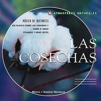 Atmosferas Naturales - Las Cosechas