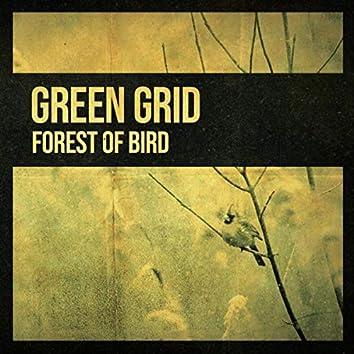 Forest of Bird