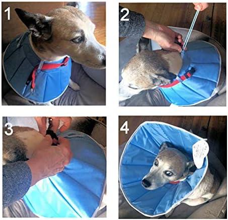 Grande Finale Collerette Post-OP de cicatrisation pour Chien ou Chat (4 (XL) - Tour de tête: 36-44cm, Hauteur: 23cm)