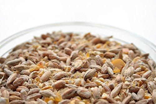 10 Kilo bio Hühnerfutter und Wachtelfutter Körnermischung - 2