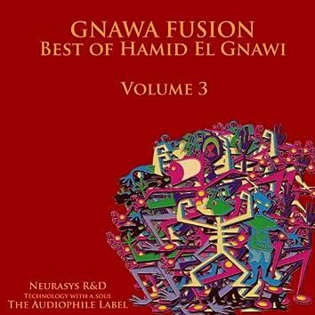 Gnawa Fusion, Vol. 3