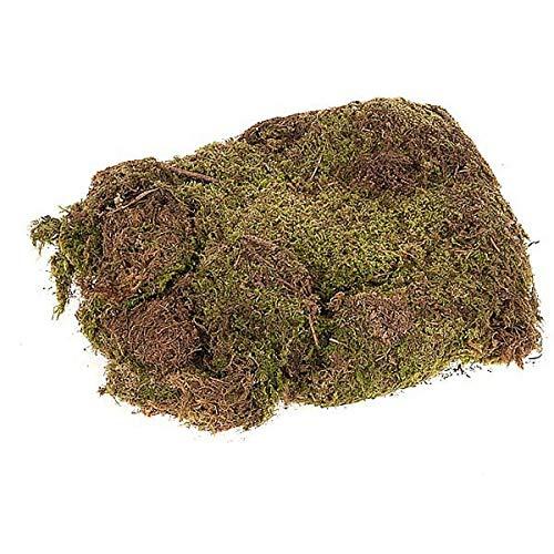 Presepe Muschio soffice Naturale in Busta da 40Gr
