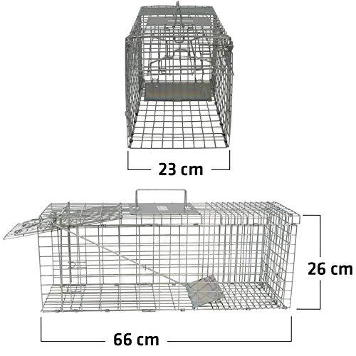 Gardigo - Jaula & Trasportín plegable de metal para mascota | Trampa de captura de...