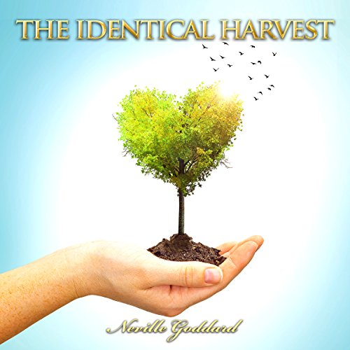The Identical Harvest audiobook cover art