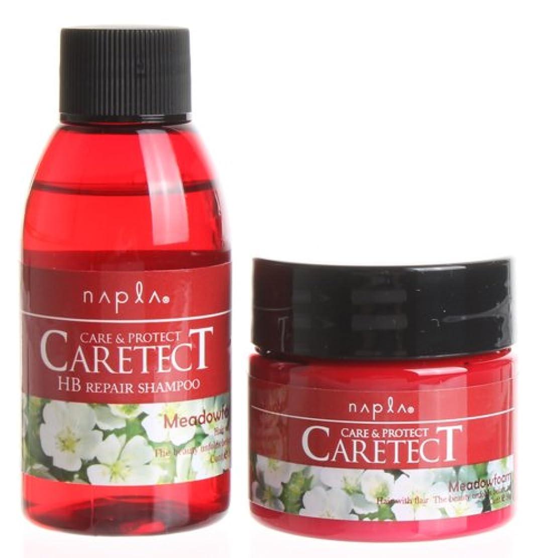 効果的にポータル含意ナプラ ケアテクトHBリペアタイプ(お試しセット)