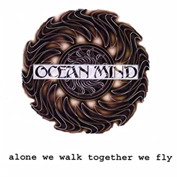 Alone We Walk Together We Fly