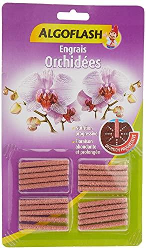 ALGOFLASH Engrais bâtonnets Orchidées, Action jusqu'à 3 mois, 20 bâtonnets, ABATORC
