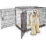 Petco Brand - You & Me 2-Door Folding Dog Crate, 48' L x 30' W x 32' H, XX-Large