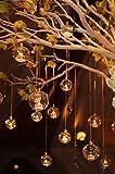 80mm Portavelas de Cristal, Jardineras de Cristal Colgantes de Pared Claro Macetas Colgando Cristal Terrario Florero Planta de Vidrio Vase Transparente para Boda Oficina Decoración