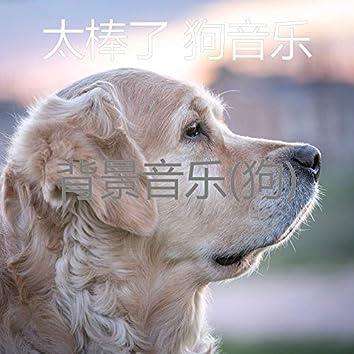 背景音乐(狗)
