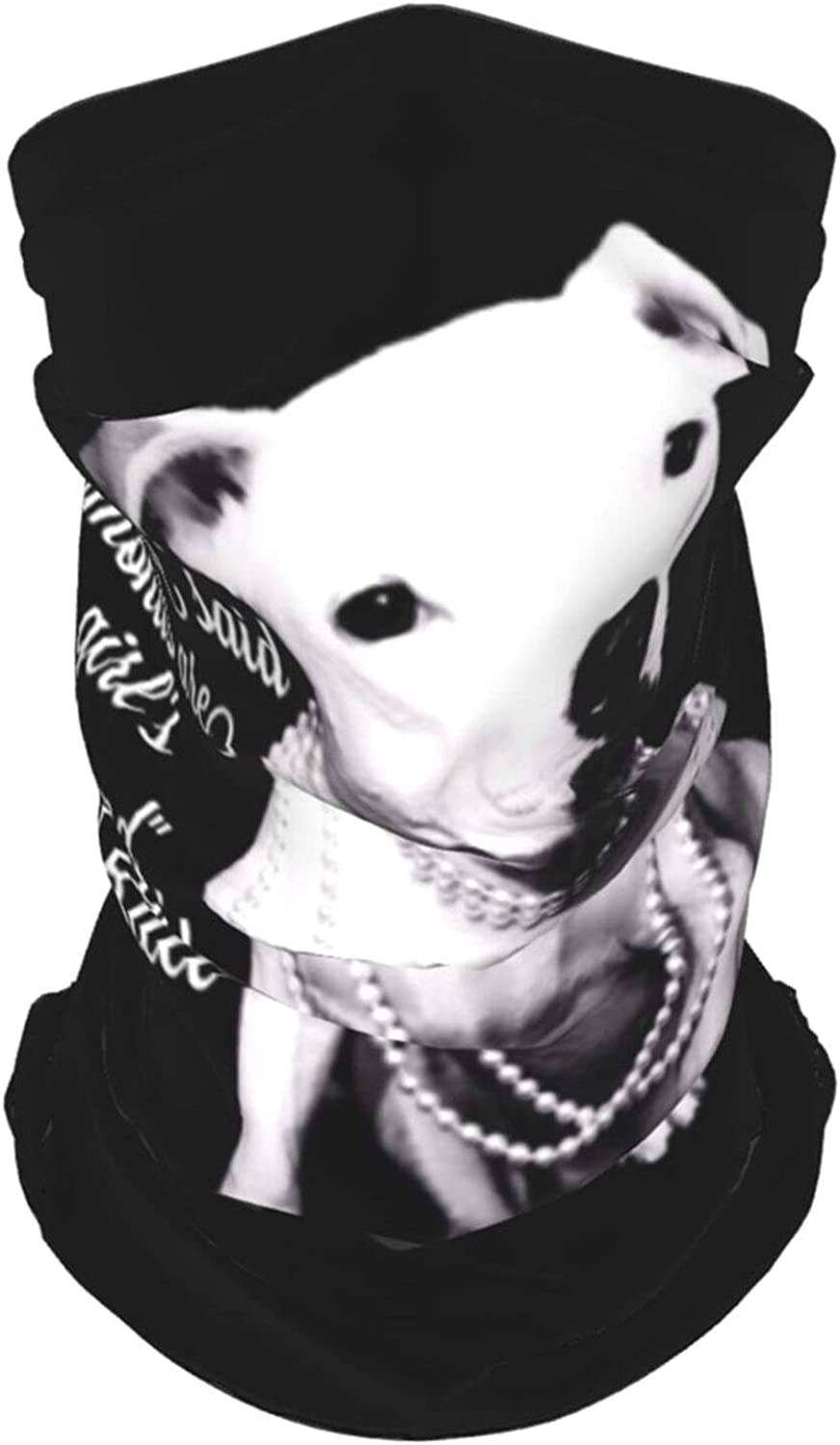 Pitbull and Girl Dog Neck Gaiter Multipurpose Headwear Ice Silk Mask Scarf Summer Cool Breathable Outdoor Sport 2 PCS