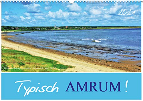 Typisch Amrum! (Wandkalender 2021 DIN A3 quer)