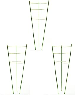 Tomato Cage Plant Support Ring Garden Trellis Flower Iron Support Climbing Plant Grow Cage Green Supporter Climbing Plants Set of 3