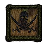 Pirate Jolly Roger...image