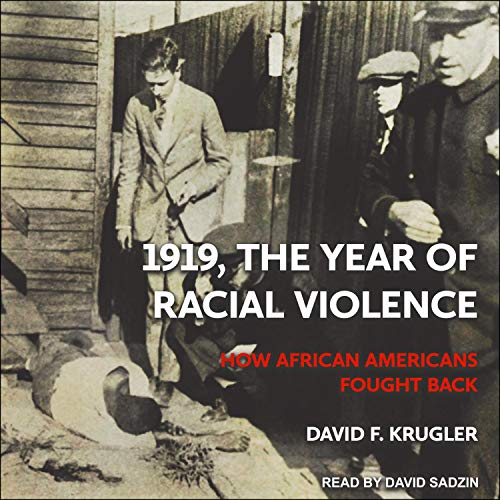 『1919, the Year of Racial Violence』のカバーアート