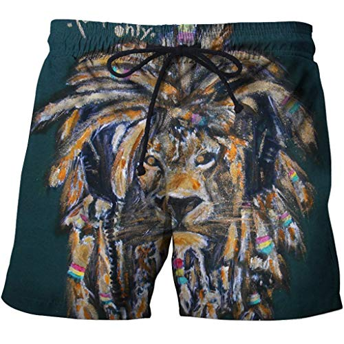 Men's Swim Trunks 3D Casual Fashion Mens Quick Dry Swim Trunks with Pockets 3D Creative Printed Lion Doodle Pattern Summer Comfy Personality Beach Board Shorts Drawstring Quick Dry Beach Shorts