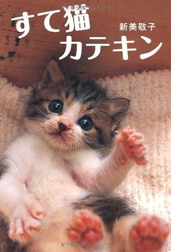 新装版 すて猫 カテキン