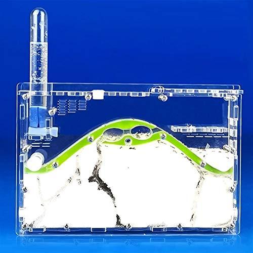 WWL Cajas de Insectos Nueva DIY Transparente Acryl Granja de la Hormiga Las Hormigas Naturales ecológicas Nido, Insecto casa de la Hormiga de fábrica Sandcastle Mascotas Taller Hormiguero