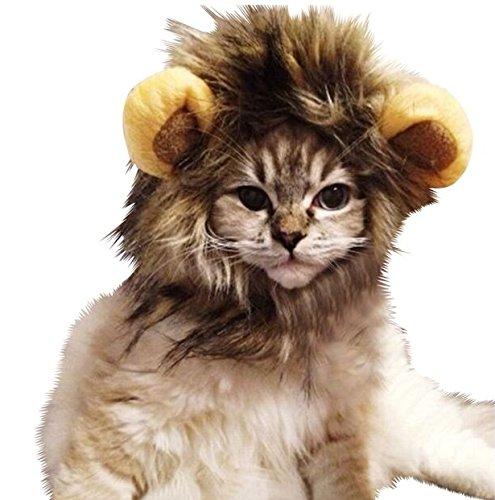 CAT LION MANE WIG HAIR CLOTHES COSTUME FUNNY - UK SELLER