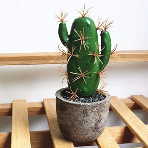 Zbaixinglongan - Maceta Artificial para suculentas, Cactus Falsos, alov, bonsái, hogar, jardín, decoración, decoración para el hogar