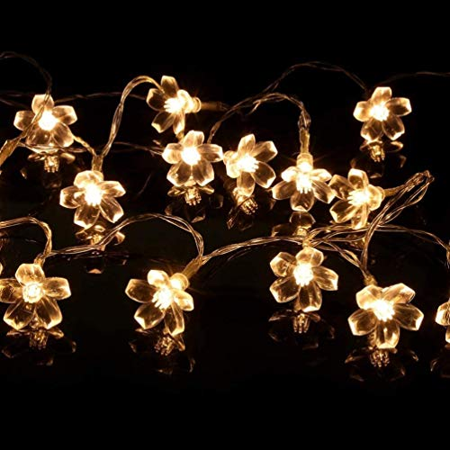 BMWY Beautifully Decorated Plum String Lights,20pcs 2.2M Battery Powered,String Lights, for Weddings, Wedding Curtains, Christmas Wreath Decoration Perfect