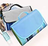 Picnic Plus Picnic Blankets Review and Comparison