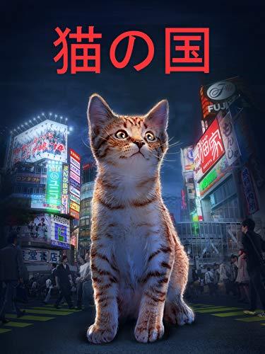 猫の国 (Cat Nation)