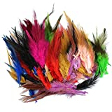LolliBeads (TM) 100 Pcs of Assorted Dyed Multi-color Long Rainbow Feathers for Hair Extension 4.5-6.5 inches