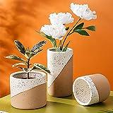 Maceta para Flores al Aire Libre, florero suculento de Esmalte de Lino de Color a Juego Creativo Coreano, Maceta de cerámica Perforada Simple para macetas para el hogar, jardín 3pcs / Set