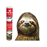 "Thumbs Up RW-SLTHLHD - Ride With A Sloth - Fenstersticker ""Faultier"""