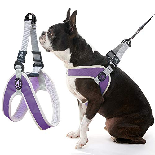 Gooby Dog Harness - Purple, Small - Simple Step-in Harness III Small Dog Harness Scratch Resistant - On The Go Breathable Inner Mesh Harness for Small Dogs or Cat Harness for Indoor and Outdoor Use