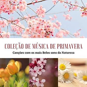 Coleção de Música de Primavera: Canções com os mais Belos sons da Natureza