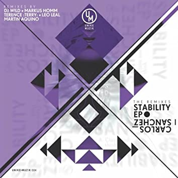 Stability / Remixes