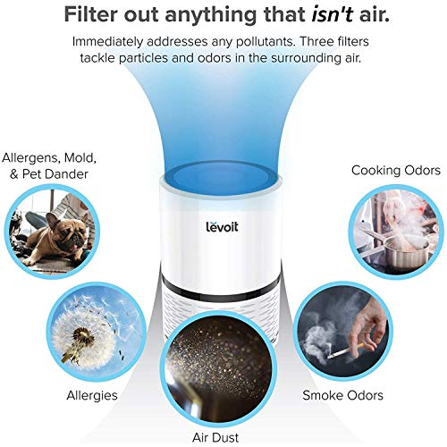 LEVOIT H13 True HEPA Filter Air Purifiers for Allergies and Pets, Smokers, Smoke, Dust, Mold, and Pollen, Cleaner for Bedroom, Large Room with Optional Night Light, LV-H132
