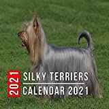 Silky Terriers Calendar 2021: 12-month mini Calendar from Jan 2021 to Dec 2021, Cute Gift Idea For Silky Terriers Lovers Or Owners Men And Women | Pictures in Every Month