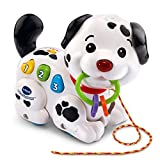 Product Image of the VTech Pull and Sing Puppy