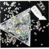 Casecover Holographiques Glitters Tranches Paillettes Glitters Paillettes pour Ongles, Corps, Tattoo Art, Make Up 30g 3 mm