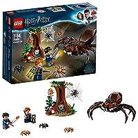Include le minifigure di Harry Potter e Ron Weasley. Contiene il ragno Aragog e un albero costruibili. Aragog ha 8 gambe snodabili e 2 zanne mobili. L'albero è dotato di funzione spara-ragnatela, ragnatela e un fungo bianco e rosso costruibile.
