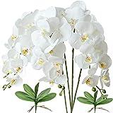 FagusHome 4 Pz Fiori Orchidea Phalaenopsis Fiori Artificiali 80cm con 2 Pz Foglie d'orchidea phalaenopsis Artificiale Fiori Finti (Bianca)