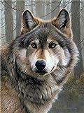 Pintura al óleo por números lobo animal pintado a mano DIY imagen arte kits dibujo lienzo regalo decoración del hogar-40x50cm sin marco_SZHC1-3726