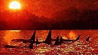 大人のための数字によるペイントキッズオイルペイントによる数字DIYキットキャンバス家の壁の装飾-イルカシャチ海の夕日の空40×50cm(フレームレス)