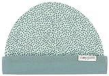 Noppies U Hat Rev Babylon Sombrero, Verde (Grey Mint C175), Talla única (Talla del Fabricante: 0M-3M) para Bebés