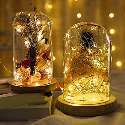 Ever Smart LED String Lights Colored Copper Wire Lights with Remote Dimmable Fairy Lights Waterproof Outdoor String Lights for Patio Garden Gate and Party Wedding Xmas Indoor Decoration