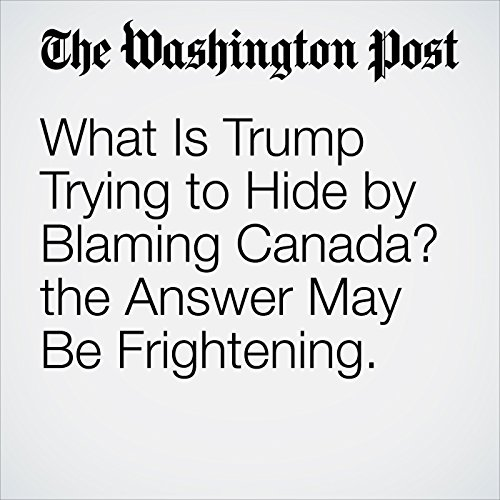 What Is Trump Trying to Hide by Blaming Canada? the Answer May Be Frightening. copertina