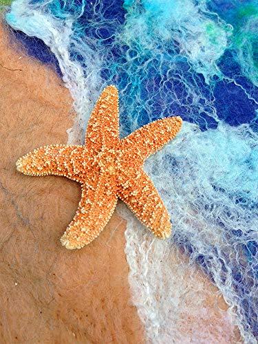 Diamond Painting Diamond Art Diamond dots Diamond Painting Kits Diamond 5d Diamond Painting (Sea Star)