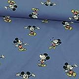 Stoffe Werning Baumwolljersey Lizenzstoff Mickey Mouse