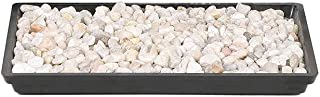 """Brussel`s 8"""" Humidity Tray with Decorative Rocks"""